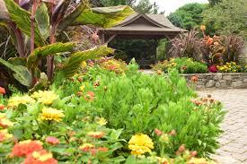 Bullington Gardens plant variety